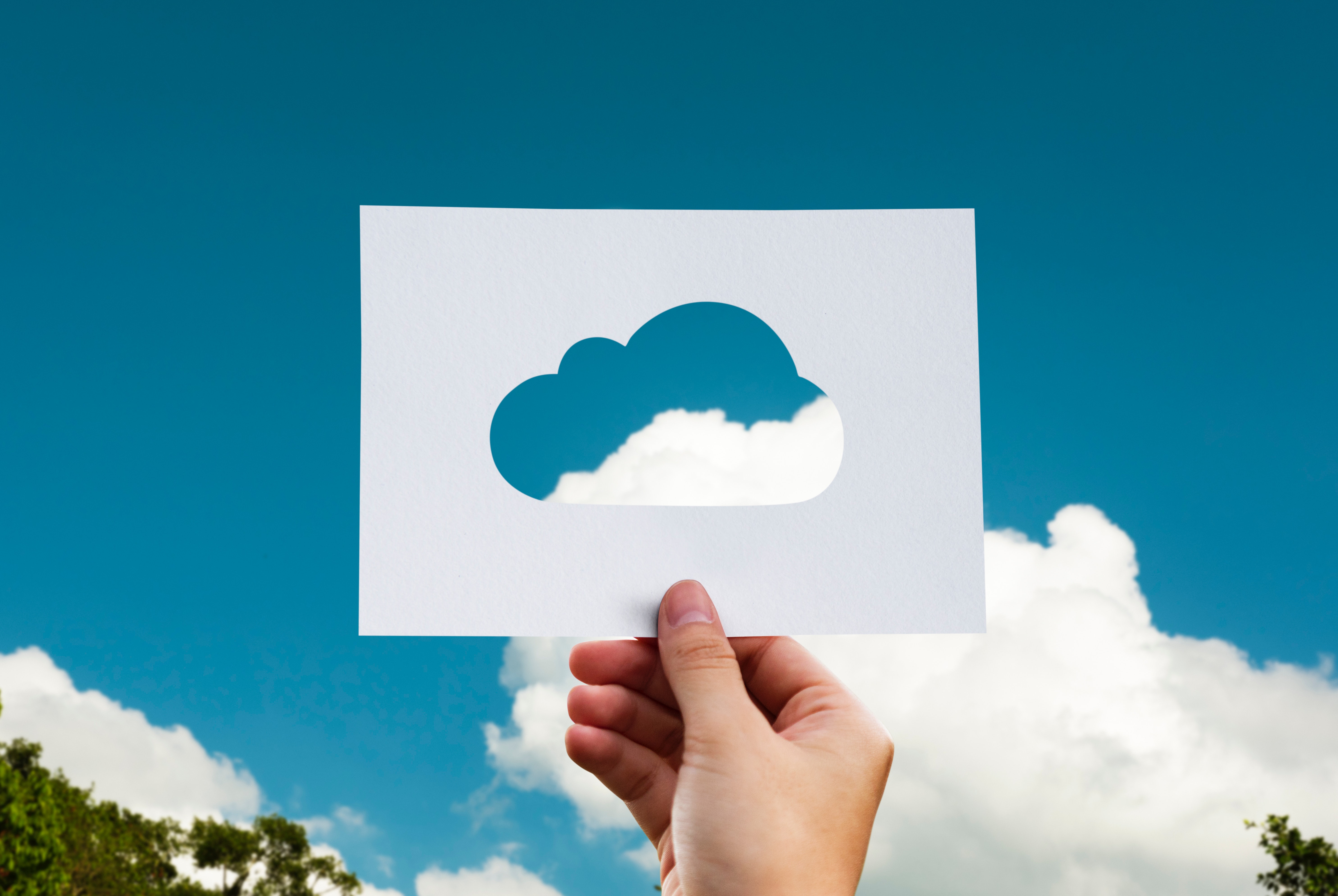 Grow your business with the cloud