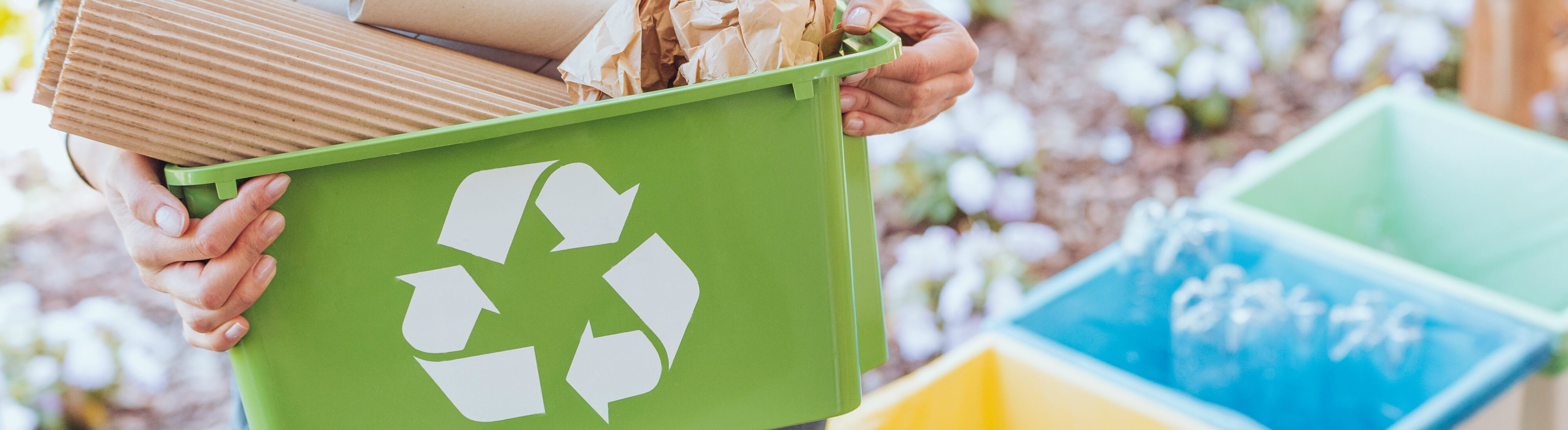 Going green: 6 ways to make your business more eco-friendly