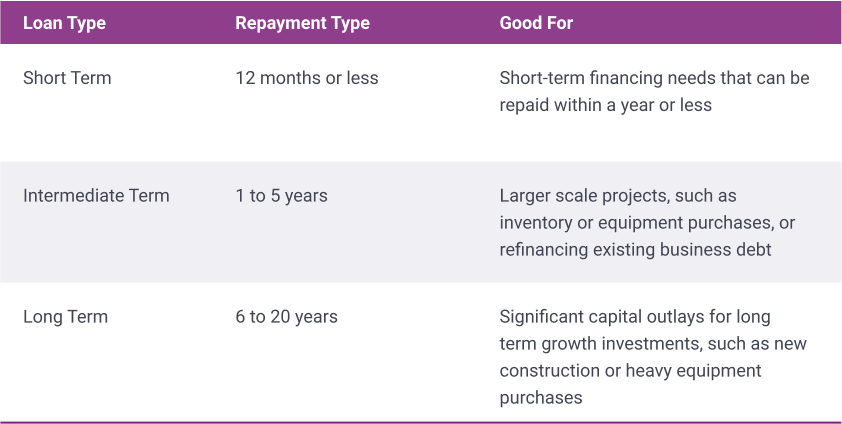 types of small business term loans