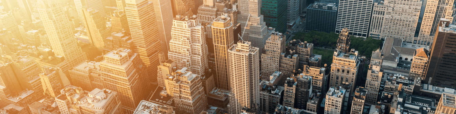 A Comprehensive Guide to Securing a Business Loan in New York